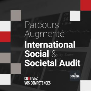 International Social & Societal Audit Augmented Course
